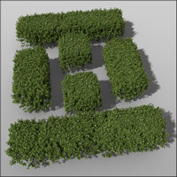 box hedges height 50cm c4d