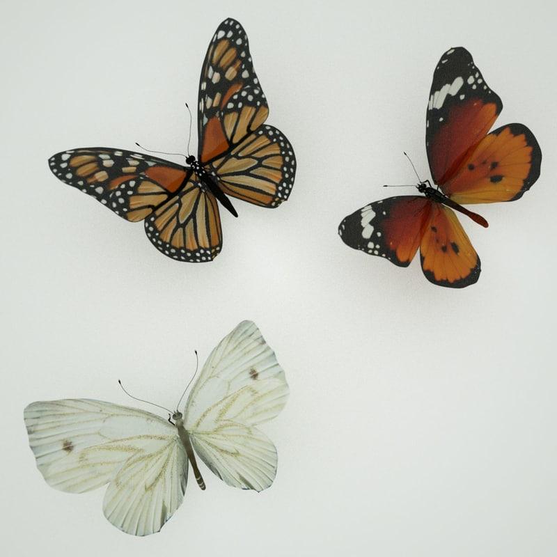 3d butterfly model