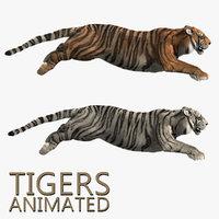 Tigers (2) (ANIMATED) (FUR)