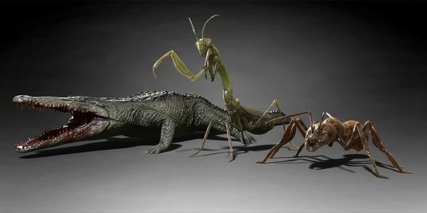 ant mantis crocodile 3d model