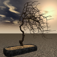 3d model of dry bonsai tree