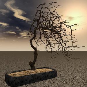 3d model of dry bonsai tree