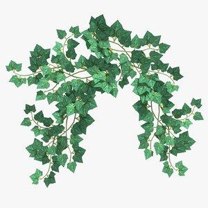 max hanging ivy