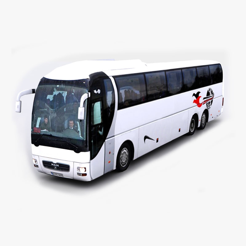 3d man lion s coach model