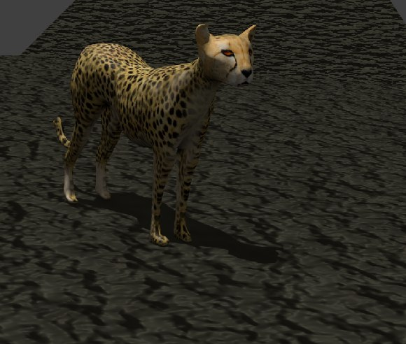 cheetah cat feline 3d model