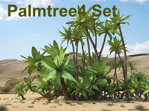 3d palmtree palm set model