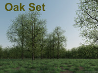oak tree set 3d model