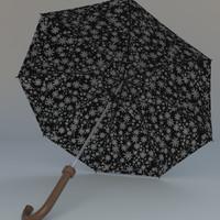 umbrella rain(1)