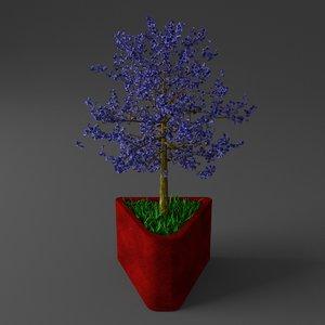 young potted jacaranda tree obj