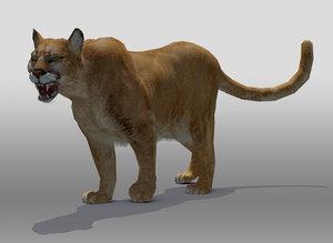 mountain lion obj