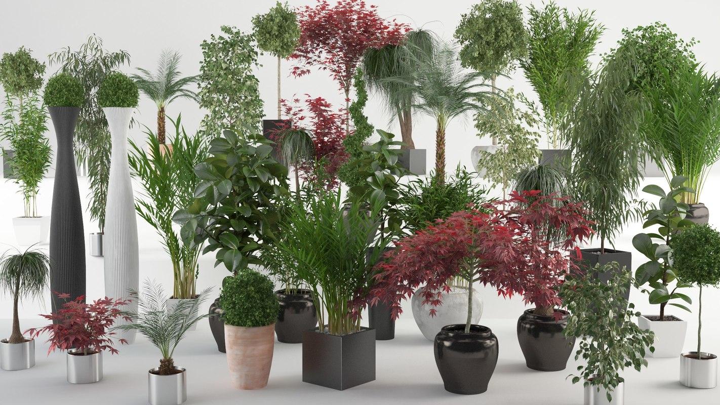 3d model interior plants