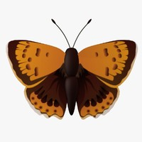 decorative butterfly fg 3d 3ds