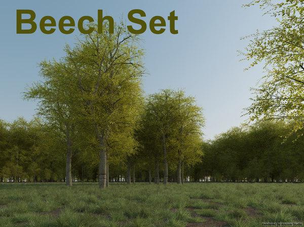 beech tree set 3d model