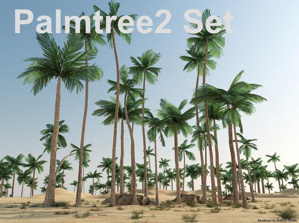 3d model palmtree 2 set