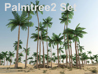 3d model palmtree 2 set
