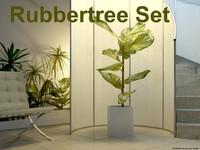 3d model of waxflower set