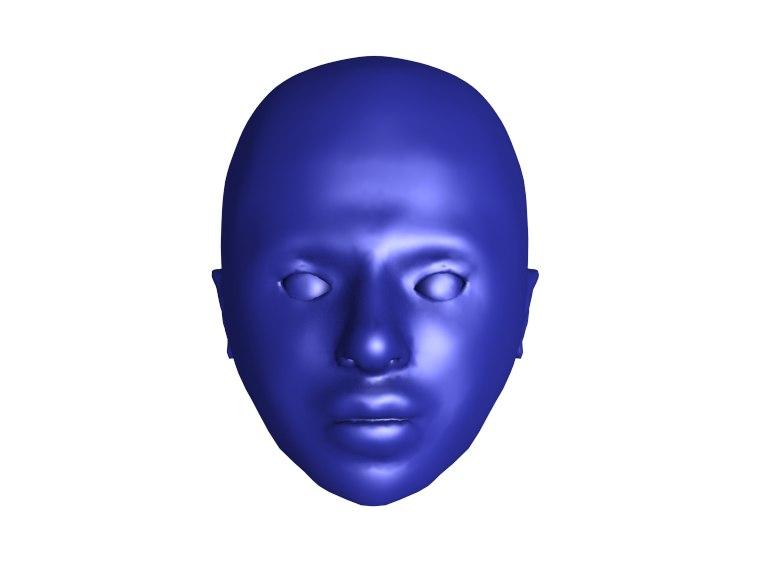 human bald head obj