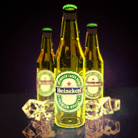 heineken bottle 3d max