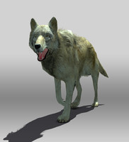 timber wolf 3d model