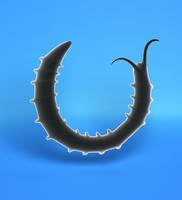 3d larval