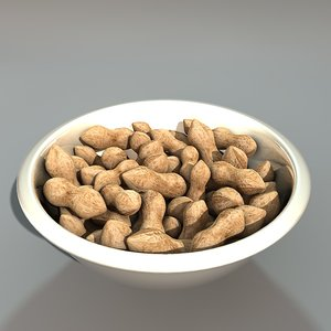 3d white bowl peanuts model