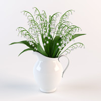 Convallaria in  pitcher