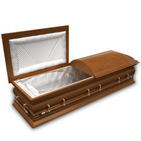 3d model coffin modeled