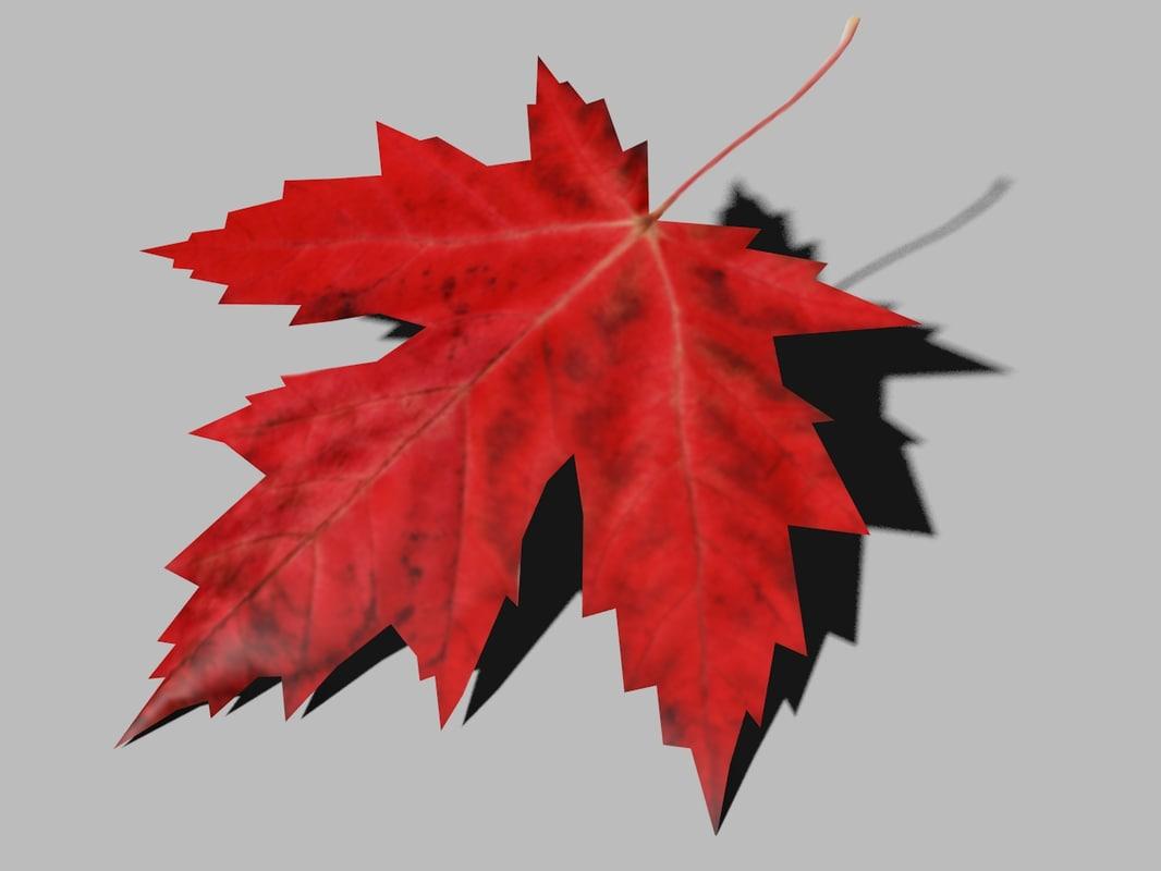 maple leaf 3d 3ds