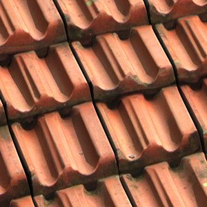 roofing 01 max