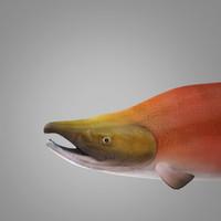 sockeye salmon 3ds