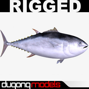 dugm02 giant bluefin tuna 3d model