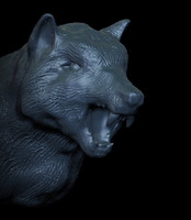 3d wolf s head