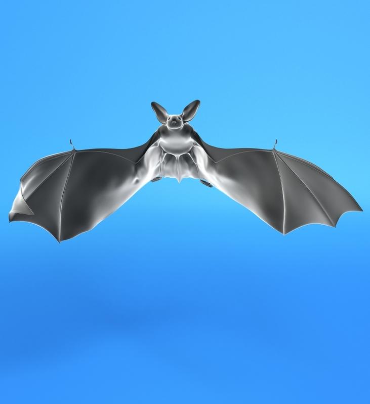 flittermouse bat 3d model