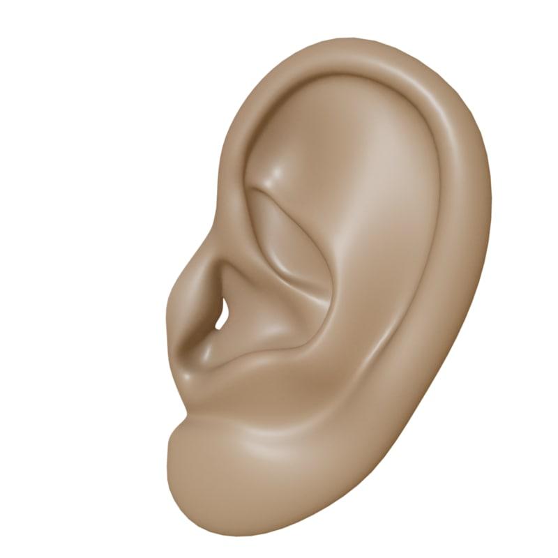 ear 3d obj