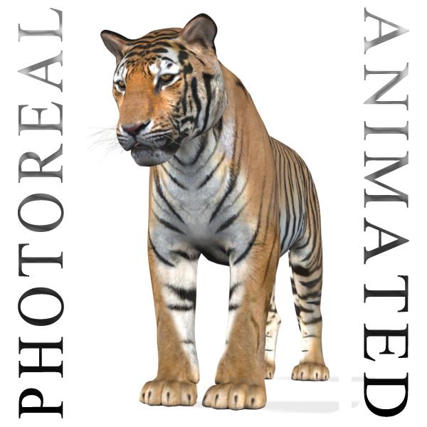 professional cgi tiger 3d model
