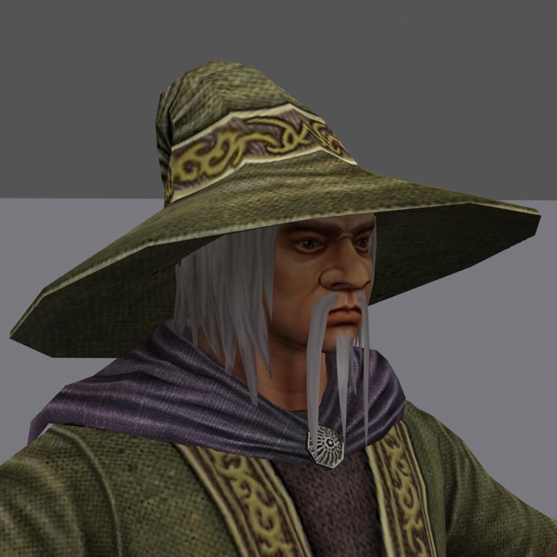 wizard fantasy 3d model