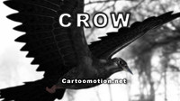 crow animation 3d model