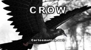 crow animation 3d model