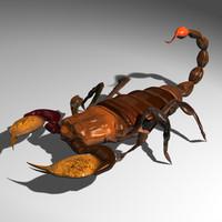 Scorpion(1)