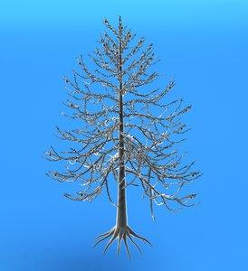 obj araucaraia tree