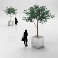 tree steel 3d max