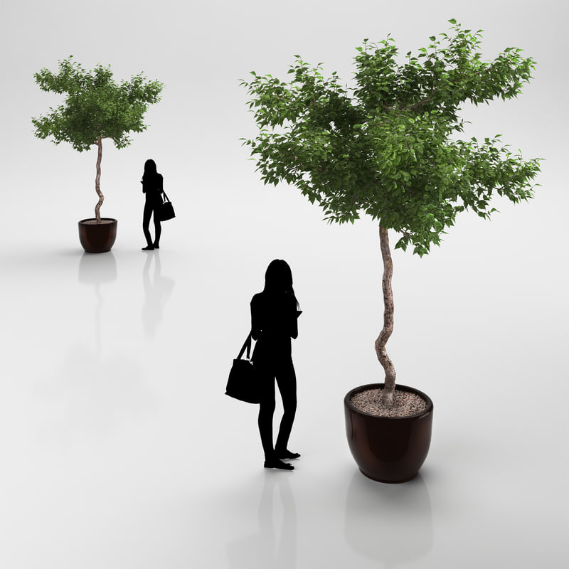 3dsmax tree ceramic pot