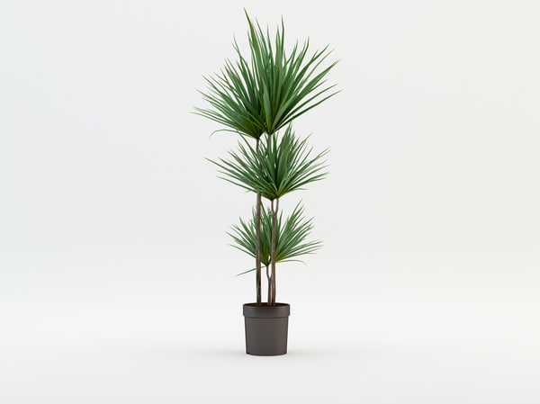 decorative tree 3d 3ds