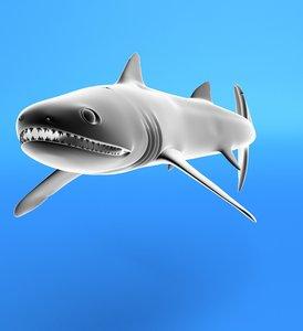 maya silur shark