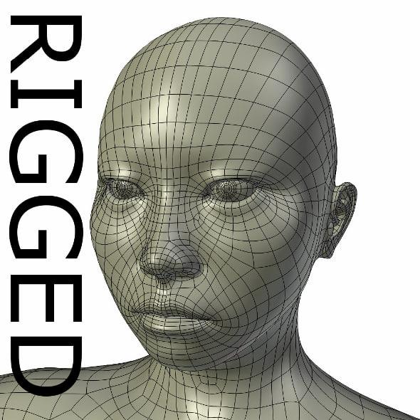 rigged base mesh asian 3d model
