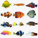 Dartfish 3D models