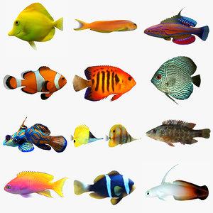 3ds max fish aquarium