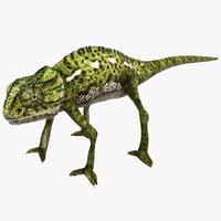 3d chameleon pose 2