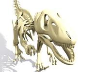 Dinosaurus skeleton