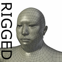 3d model rigged base mesh obese